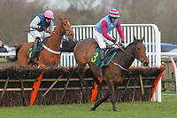 Neverownup ridden by Dave Crosse in jumping action in the Gold Driving Safer For Longer Selling Hurdle