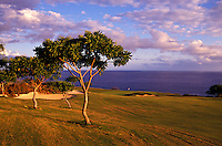 The challenge a Manele, hole number 17 designed by Jack Nicklaus