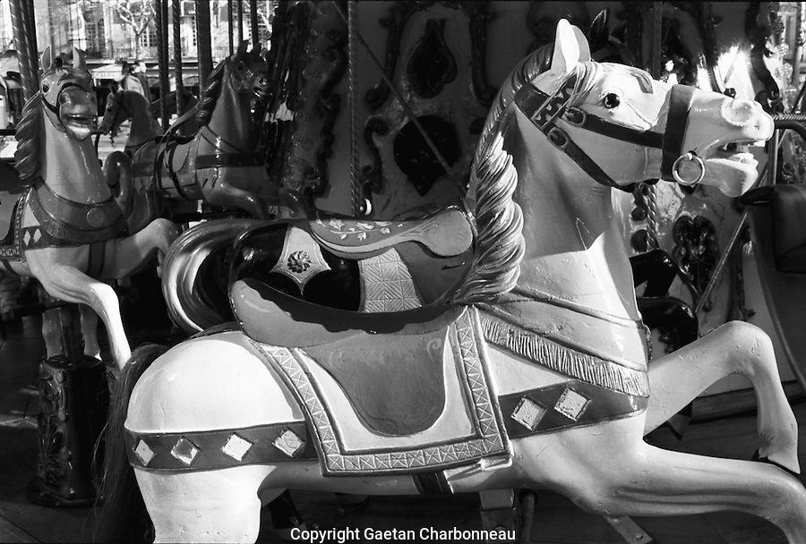 White horse in a merry go round