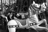 White horse in a merry go round