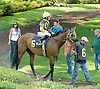 In the Juice before The Cape Henlopen Stakes Delaware Park on 6/28/12
