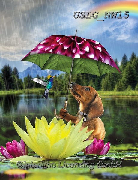 PAUL,REALISTIC ANIMALS, REALISTISCHE TIERE, ANIMALES REALISTICOS, paintings+++++NW_Umbrella-Dog-C,USLGNW15,#a#, EVERYDAY ,funny photos