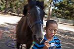 Juneal Jacobs - age 12 - Juneal is in the protection of Elkana Childcare and currently participates in the Montrose Equine Youth Development Programme 25 December 2011..Equine assisted therapy at De Grendel farm Cape Town, through the Montrose clinic and foundation.The clinic treats patients with addiction illnesses such as alcoholism and eating disorders and the foundation is a charity that helps with street children from the townships..Elkana Childcare Safe house, a drop-in centre and a shelter for children on the street. The centre is based in Malmesbury, Western Cape and is for children who have been through emotional, physical and sexual misuse..