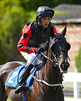 Alucinado ridden by Oscar Pereira goes down to the start of The Smith & Williamson Fillies' Novice Stakes (Class 5 during Afternoon Racing at Salisbury Racecourse on 17th May 2018