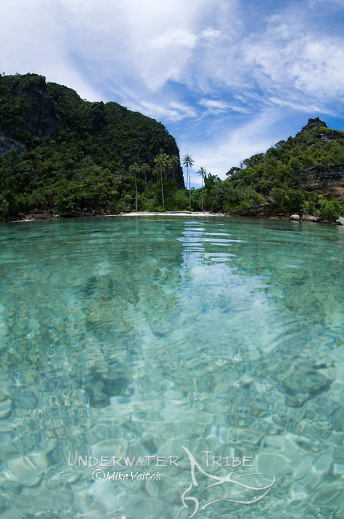 Split level photo, Misool area, Raja Ampat, West Papua, Indonesia, Pacific Ocean