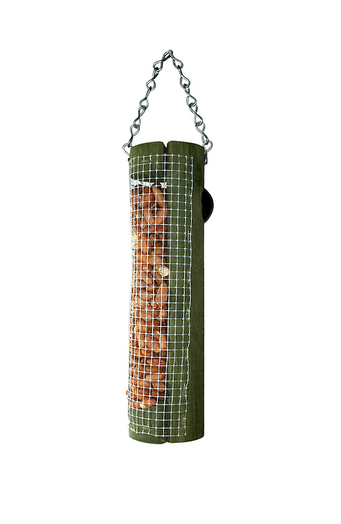 Common Garden Peanut Bird Feeder