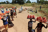 "Afrika SAMBIA copperbelt Kitwe , Frauen verkaufen Tomaten an Bus Reisende an der Strasse | .Africa ZAMBIA copperbelt Kitw women sell tomatos at road .| [ copyright (c) Joerg Boethling / agenda , Veroeffentlichung nur gegen Honorar und Belegexemplar an / publication only with royalties and copy to:  agenda PG   Rothestr. 66   Germany D-22765 Hamburg   ph. ++49 40 391 907 14   e-mail: boethling@agenda-fototext.de   www.agenda-fototext.de   Bank: Hamburger Sparkasse  BLZ 200 505 50  Kto. 1281 120 178   IBAN: DE96 2005 0550 1281 1201 78   BIC: ""HASPDEHH"" ,  WEITERE MOTIVE ZU DIESEM THEMA SIND VORHANDEN!! MORE PICTURES ON THIS SUBJECT AVAILABLE!! ] [#0,26,121#]"