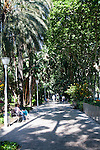 People walking along path through palm trees and botanical gardens, Malaga, Spaing