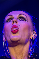 The Human League performing during AmpRocks 2017, part of Ampthill Festival, at Ampthill Great Park, Ampthill, England on 30 June 2017. Photo by David Horn.