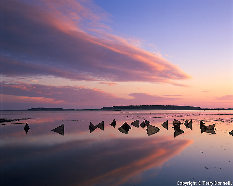 Wellfleet, Cape Cod, MA<br /> Sunset reflections on Welfleet Harbor with silhouetted patterns of oyster condos (or cages) exposed at low tide