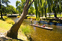 Punting on Avon River in Christchurch - Canterbury, New Zealand