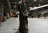 """Lance Cpl. Douglas Smith and """"Baddy,"""" part of HMX's security detail, during a quiet moment before President Bush's helicopter is loaded on a plane for his trip to Peru, Marine Corps Base Quantico, Va., November 18, 2008."""