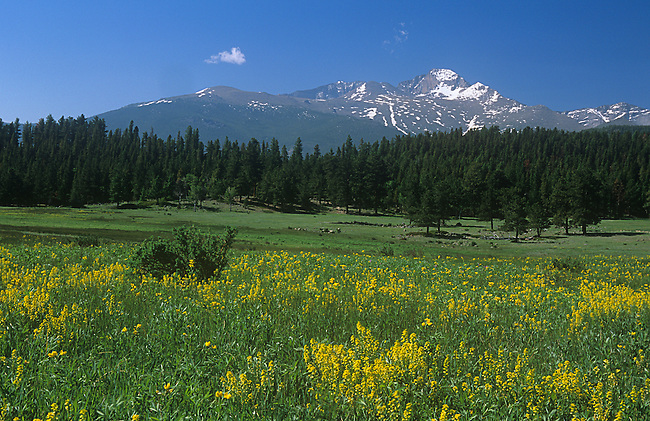 Long's Peak, Beaver Meadows, Spring, Rocky Mountain National Park, Colorado