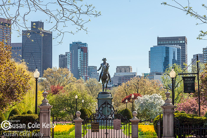 The George Washington statue in the BostonPublic Garden, Boston, MA, USA