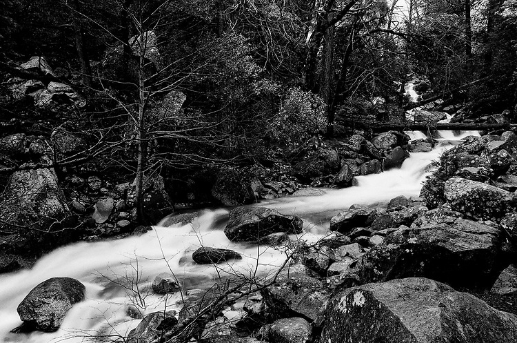 Creek from Bridaveil Falls , Yosemite 2017, Ilford Delta Film