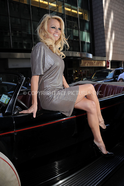 WWW.ACEPIXS.COM . . . . . .April 30, 2011...New York City...Pamela Anderson Promotes New Bill to Replace NYC's Horse-Drawn Carriages With Classic Cars on April 30, 2011 in New York City....Please byline: KRISTIN CALLAHAN - ACEPIXS.COM.. . . . . . ..Ace Pictures, Inc: ..tel: (212) 243 8787 or (646) 769 0430..e-mail: info@acepixs.com..web: http://www.acepixs.com .