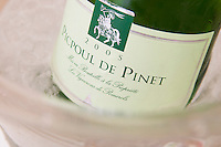Cave cooperative Les Vignerons de Pomerols. Picpoul de Pinet. Languedoc. Ice bucket. France. Europe. Bottle.
