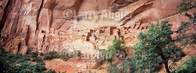Betatakin (Ledge House) ruins in the alcove beneath Tsegi Point...Navajo National Monument, Arizona
