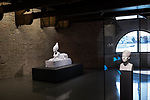 "Venezia - Punta della Dogana . La mostra di Damien Hirst: ""Tresaures from the Wreck of Unbelievable. ""Tadukherba and the Sphinx""."