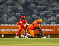 1st November 2019; Western Australia Cricket Association Ground, Perth, Western Australia, Australia; Womens Big Bash League Cricket, Perth Scorchers versus Melbourne Renegades; Natalie Sciver of the Perth Scorchers is bowled first ball - Editorial Use