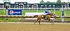 Onetoughtiger MHF winning at Delaware Park on 6/14/12