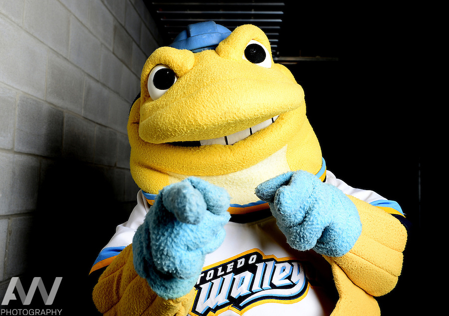 Oct 19, 2012; Toledo, OH, USA; Toledo Walleye mascot Spike against the Cincinnati Cyclones at Huntington Center: Mandatory Credit: Andrew Weber