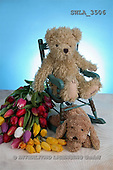 Carl, CUTE ANIMALS, teddies, photos, tulips, 2 teddies(SWLA3506,#AC#)
