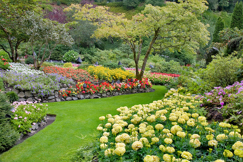 Flower beds at Butchart Gardens, B.C. Canada