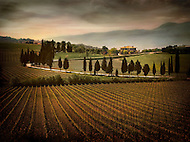 The Capitoni Vineyard estate lies on a hill above the vineyard in Tuscany, Italy