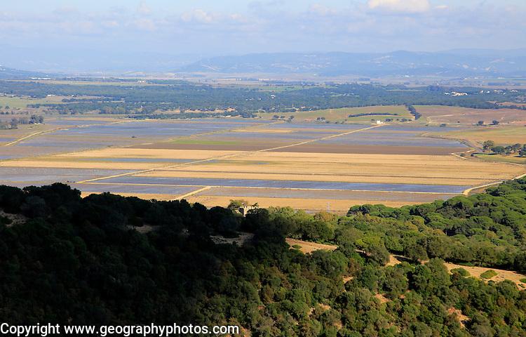 Rice growing paddy fields in countryside near Vejer de la Frontera, Cadiz province, Spain