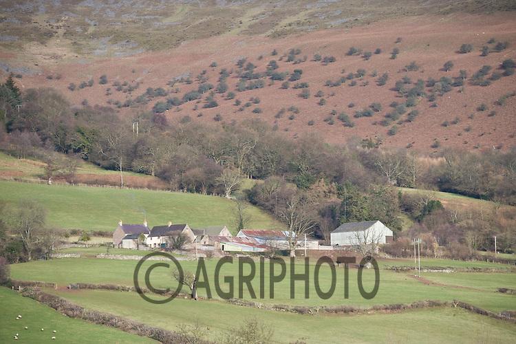 Welsh Hill Farm.Tim Scrivener,Vine Cottage,Barholm,Stamford,.Lincolnshire,PE9 4RA