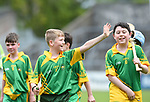 Cian Cleary of Kilkishen/O Callaghan's Mills salutes the fans following their Schools Division 5 final at Cusack Park. Photograph by John Kelly