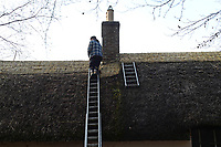 BNPS.co.uk (01202 558833)<br /> Pic: ZacharyCulpin/BNPS<br /> <br /> PICTURED: The roof is thatched sections over the years, rather than doing it all in one go. This is to allow the rare thatch moss that grows on the roof to migrate to the newly thatched areas.<br /> <br /> Master thatcher Scott Symonds puts the finishing touches to the new straw roof at the former home of Victorian author Thomas Hardy.<br /> <br /> The National Trust, which owns the picturesque cottage near Dorchester, Dorset, has closed the historic property for more than a month while it undergoes vital conservation work.<br /> <br /> On the inside new structural supports have been installed and the stone floor repointed after taking a battering from thousands of visitors over the years.<br /> <br /> And on the outside the roof has been re-thatched by Scott and his dad Dave who even appeared was an extra in the 2015 film adaptation of Hardy's Far From the Madding Crowd.