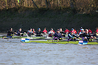 Crew: 92   Thames   MasC<br /> <br /> Quintin Head 2019<br /> <br /> To purchase this photo, or to see pricing information for Prints and Downloads, click the blue 'Add to Cart' button at the top-right of the page.