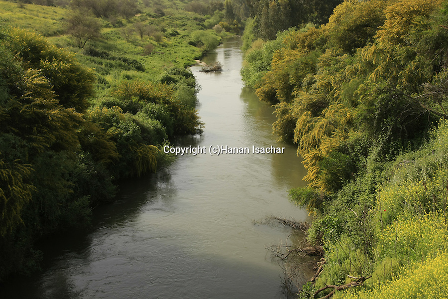 Israel, Upper Galilee, the Jordan River, a view from Bnot Yaacov Bridge .