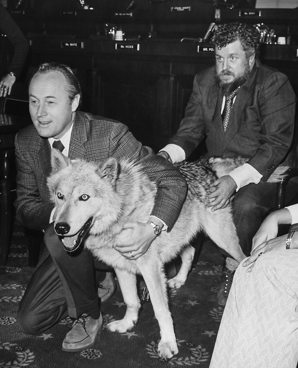 Close-up of Rep. G. William Whitehurst, R-Va., with dog. (Photo by CQ Roll Call)