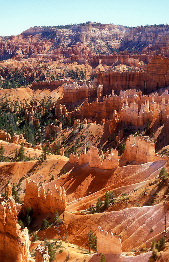 USA,Utah,Bryce Canyon National Park, view of Bryce amphitheatre