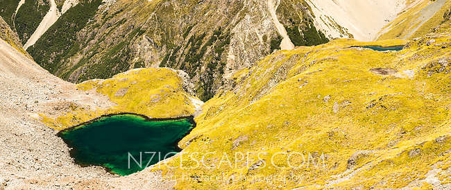 Pristine, emerald green, alpine tarns, Nelson Lake National Park, South Island, New Zealand, NZ