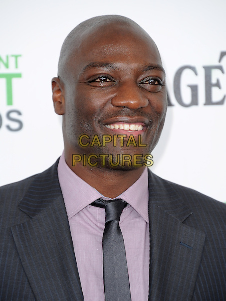 SANTA MONICA, CA, MARCH 01: Adewale Akinnuoye-Agbaje attends The 2014 Film Independent Spirit Awards held at Santa Monica Beach in Santa Monica, California, USA on March 1st, 2014.                                                                              <br /> CAP/DVS<br /> &copy;Debbie VanStory/Capital Pictures