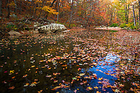 Fall along Richland Creek in the Ozark National Forest in Arkansas.