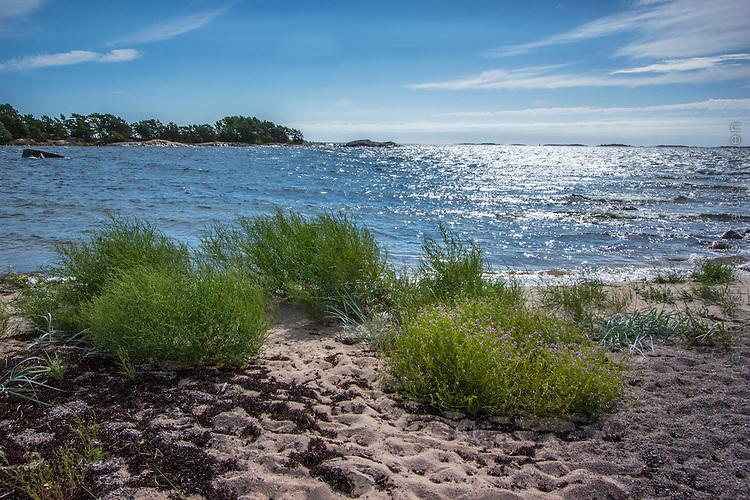 Sandstrand på Sanhamn Stockholms skärgård Östersjön