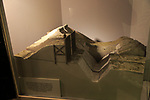 Model of Danebury hill fort defences, Iron Age museum, Andover, Hampshire, England