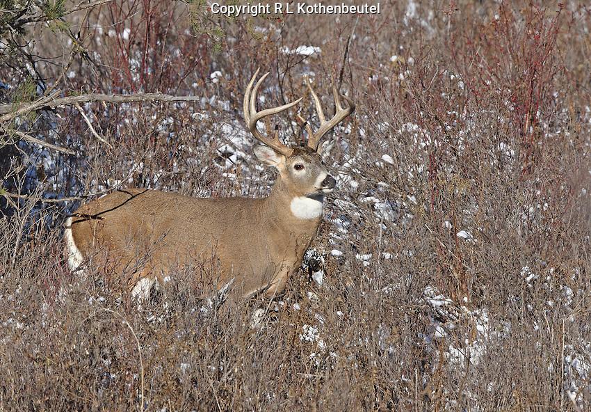 Western Montana<br /> 11/12/2014