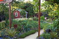 View from patio to vegetable garden and tool shed in Habets backyard garden, Pleasant Hill, California