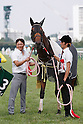 Horse Racing : Toyota Sho Chukyo Kinen 2016