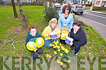 J D Cattigan, Marie Walsh, Bernie Horgan Carmel O'Connell launch Irish Cancer Society Daffodil Day  in Castleisland on Friday March 28th