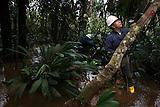 Reconomiento ambiental, Campo Rubiales, Meta, Colombia..