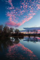 Pre-dawn mirror, Bosque del Apache National Wildlife Refuge, NM.