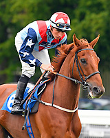 Brancaster ridden by Jason Watson goes down to the start of The DEOS Group Handicap during Evening Racing at Salisbury Racecourse on 11th June 2019