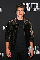 BUENA PARK, CA - SEPTEMBER 29: Gregg Sulkin, at Knott's Scary Farm & Instagram's Celebrity Night at Knott's Berry Farm in Buena Park, California on September 29, 2017. Credit: Faye Sadou/MediaPunch